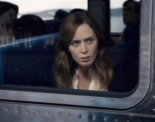 The_Girl_On_The_Train_01 (Medium).jpg