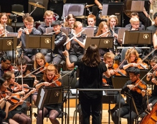 An orchestra, with a conductor, stood with her back to us