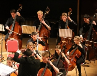 Students, as part of a larger orchestra, play a variety of string instruments