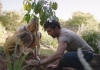 Lady, man and young girl plant a small tree in the ground