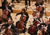 A group of musician in black play cellos in an orchestra