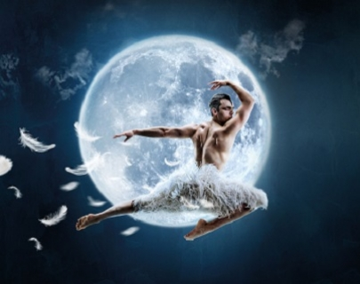 Male swan leaping in front of a moon.