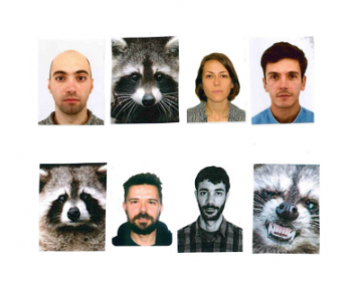 A collage of headshots of 4 men, 1 woman and 3 racoons