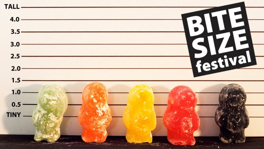 Bite Size Festival returns to the Warwick Arts Centre
