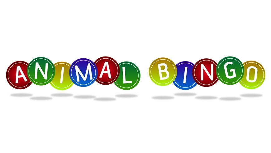 Animal-Bingo-Header.jpg