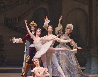 The Sleeping Beauty Main Image High-Res.jpg