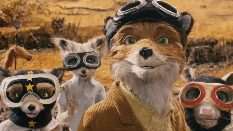 Fantastic Mr Fox Family Activities