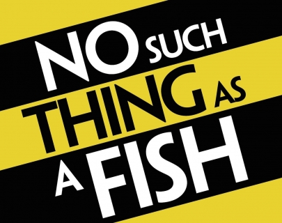 Black and yellow stripped logo with the words 'No such thing as a fish'