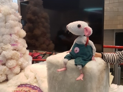 Snow Mouse puppet on a white table