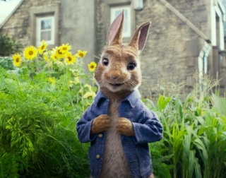 Peter Rabbit wearing a blue jacket standing in the garden