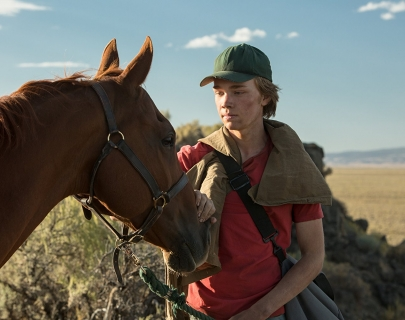 A boy in a red t-shirt and green cap stands with a brown horse