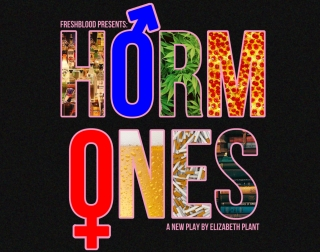 The word Hormones written in capital letters