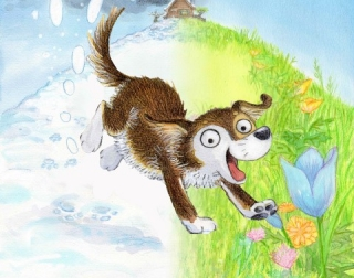 Drawing of a brown and white dog running down a hill covered partly in snow and partly in grass and flowers