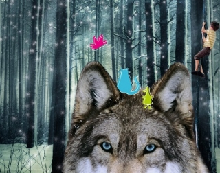 An image of a wolf's head with snowy trees in the background, and a boy climbing a rope.