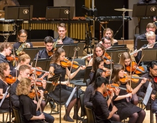 The strings section of the orchestra, composed of young men and women playing violins