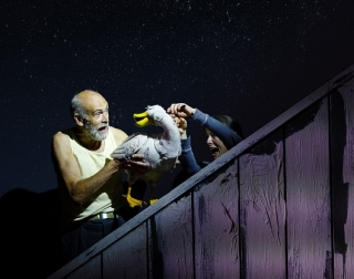 A man and a woman interact with Fup, a puppet of a duck, against a starry backdrop